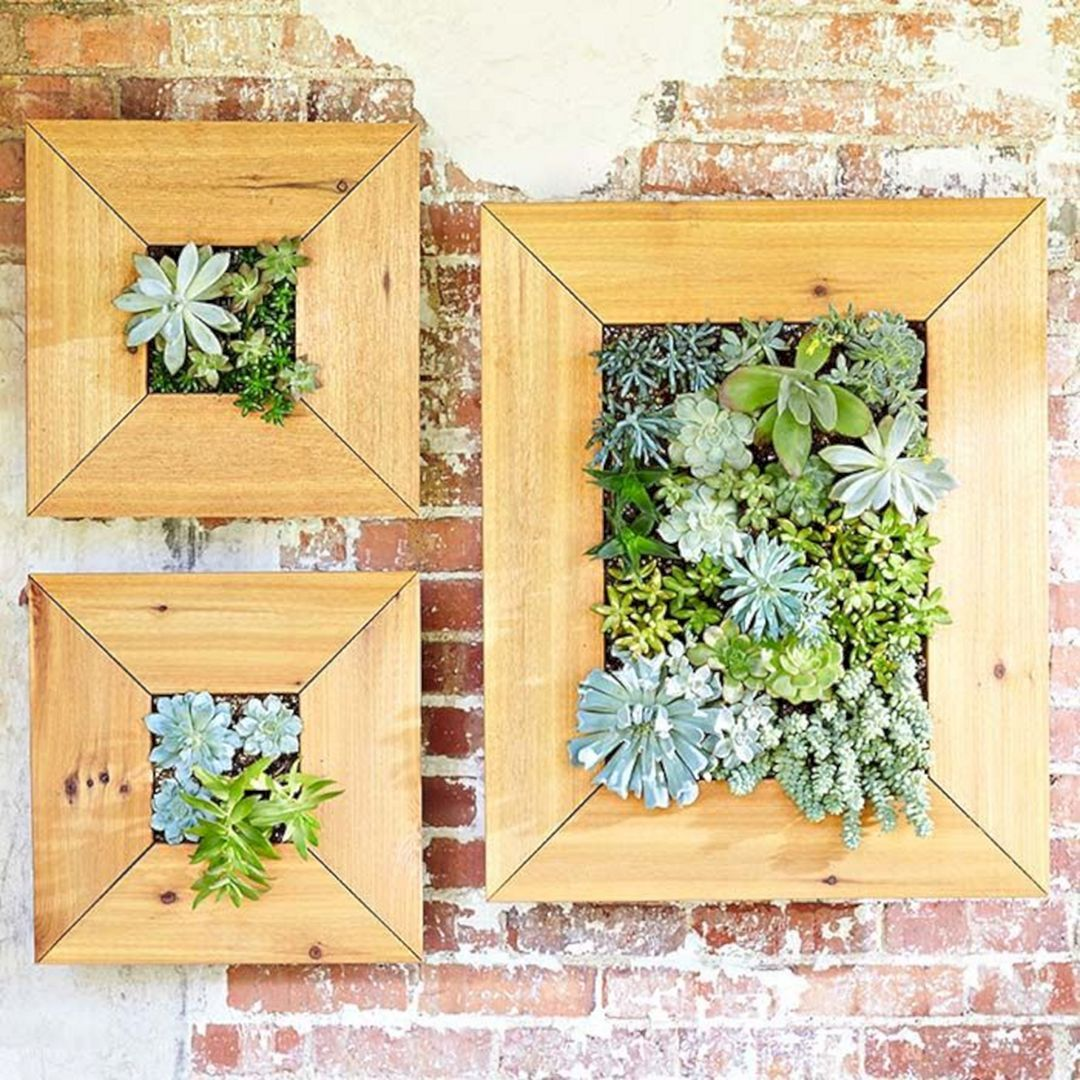 Awesome Diy Succulent Wall Art Ideas - The Wall Art Decorations ...