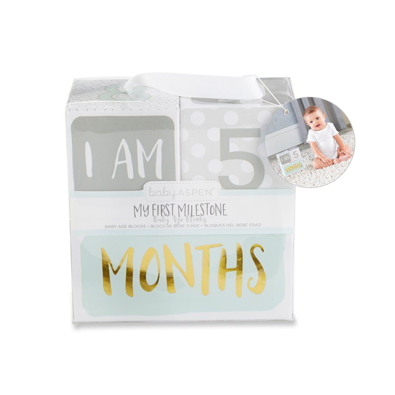 Baby Aspen S My First Milestone Baby Age Blocks Baby Age Blocks Baby Aspen Age Blocks