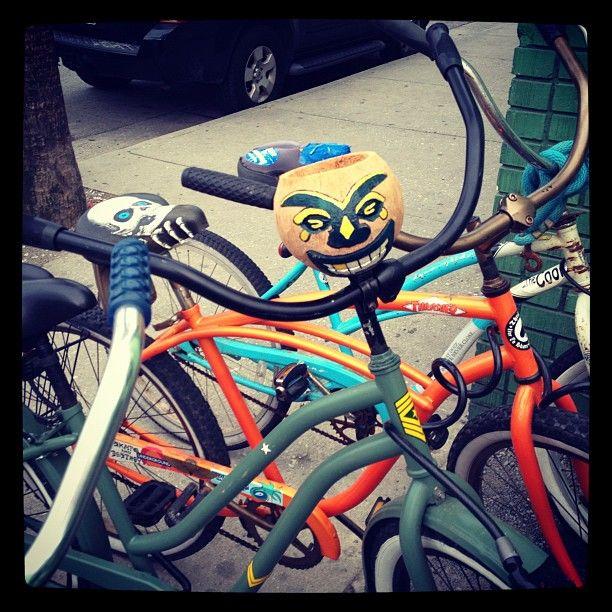 Bike love coconut drink holder found at Folly Beach