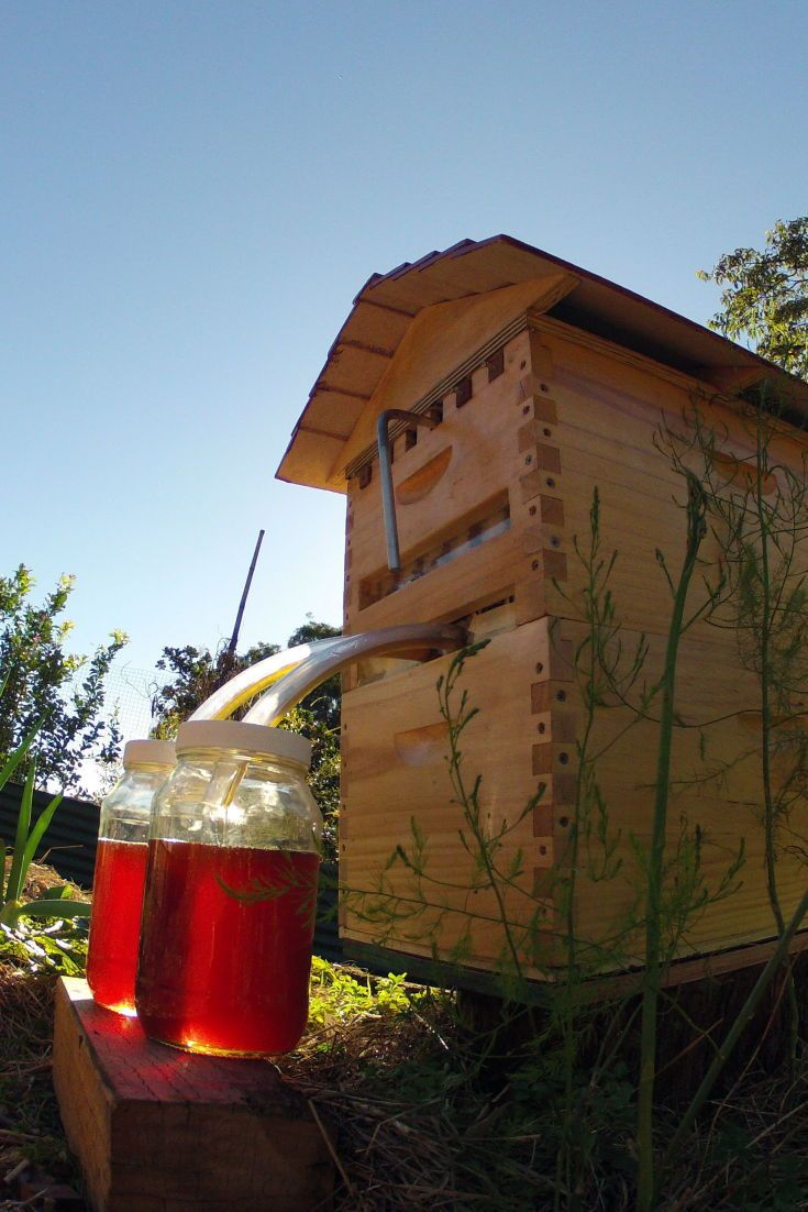 Meet The 'Flow Hive,' A Sweet Invention That Serves Honey On Tap