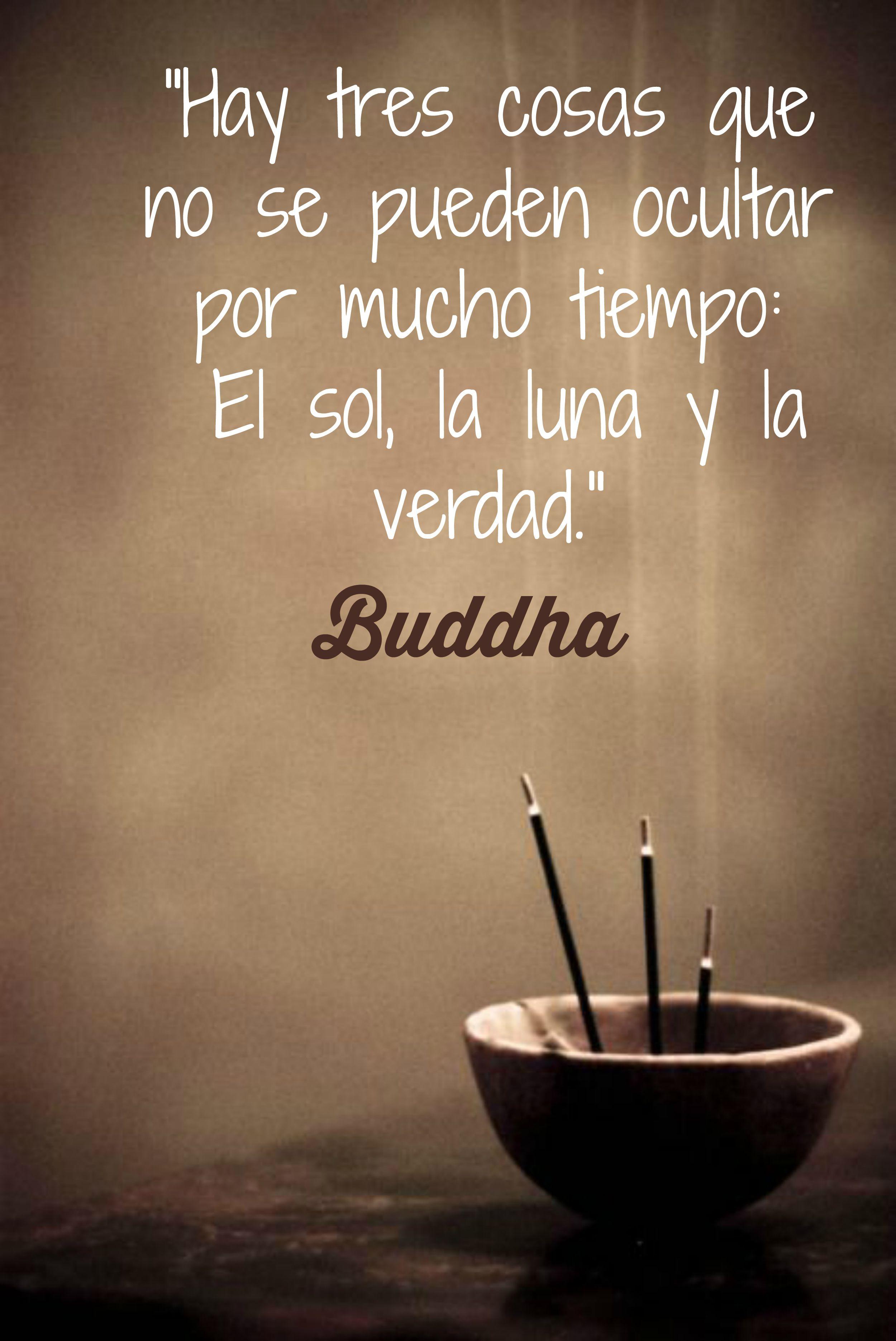 Buddha El Sol La Luna Y La Verdad Frases Quotes Buda