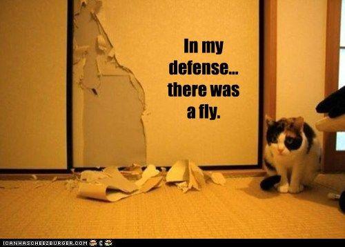 In my defense...
