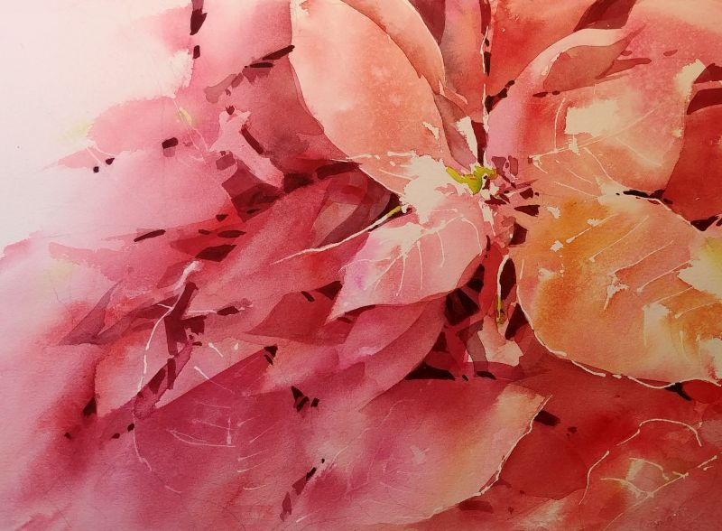 Holiday Poinsettia Ii Watercolor Negative Painting Watercolor