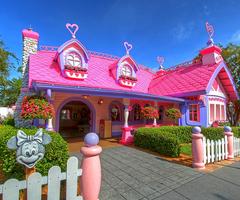 Minnie's Adorable house.
