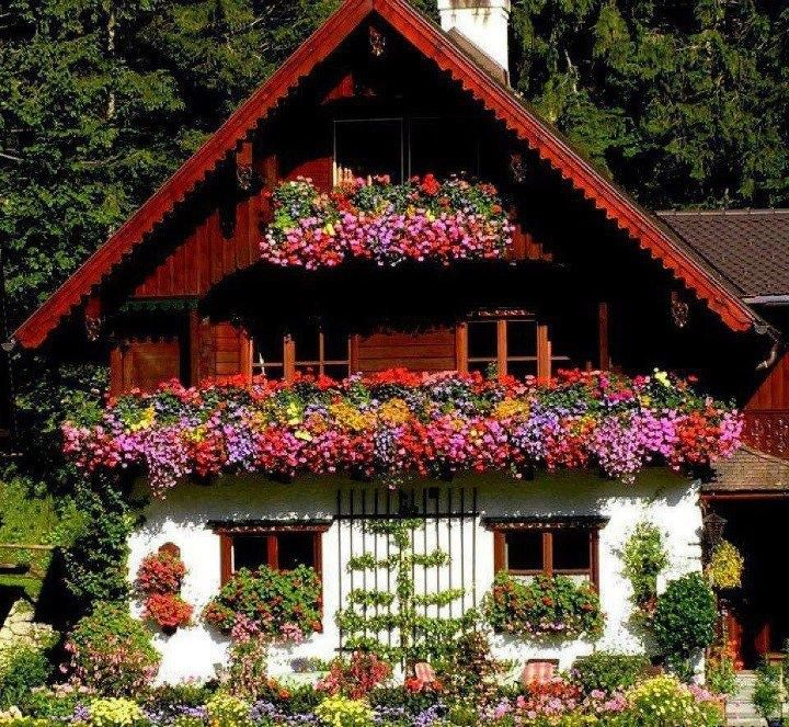 German House With Flower Boxes Beautiful German Swiss Cottage Swiss Chalet German Houses Swiss Cottage