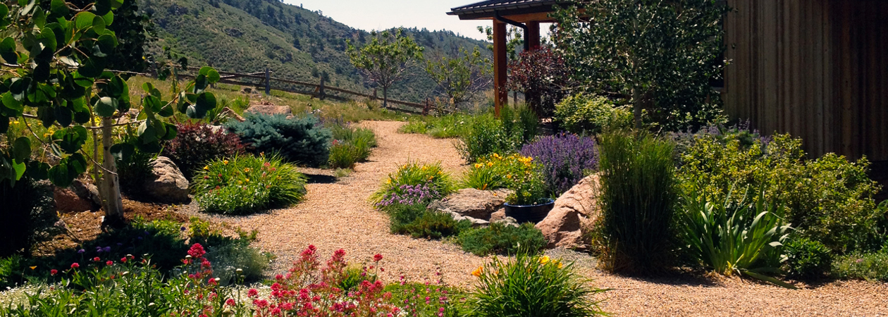 Boulder xeriscape experts outdoor craftsmen boulder co for Garden design xeriscape