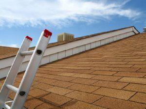 Pro #2904905 | Restoration Roofing LLC | Blackwood, NJ 08012