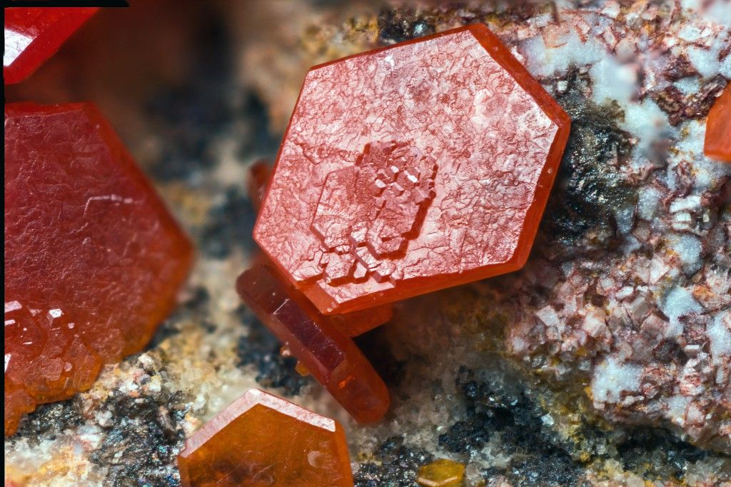 Vanadinite Locality:Old Yuma Mine (Yuma Mine), Saguaro National Monument, Amole District, Tucson Mts, Pima Co., Arizona, USAA tabular crystal, thin, red, vanadinite, with the presence of wide base  and hexagonal bipyramid and absence of the prism. Collection and photo  of Gianfranco Ciccolini.