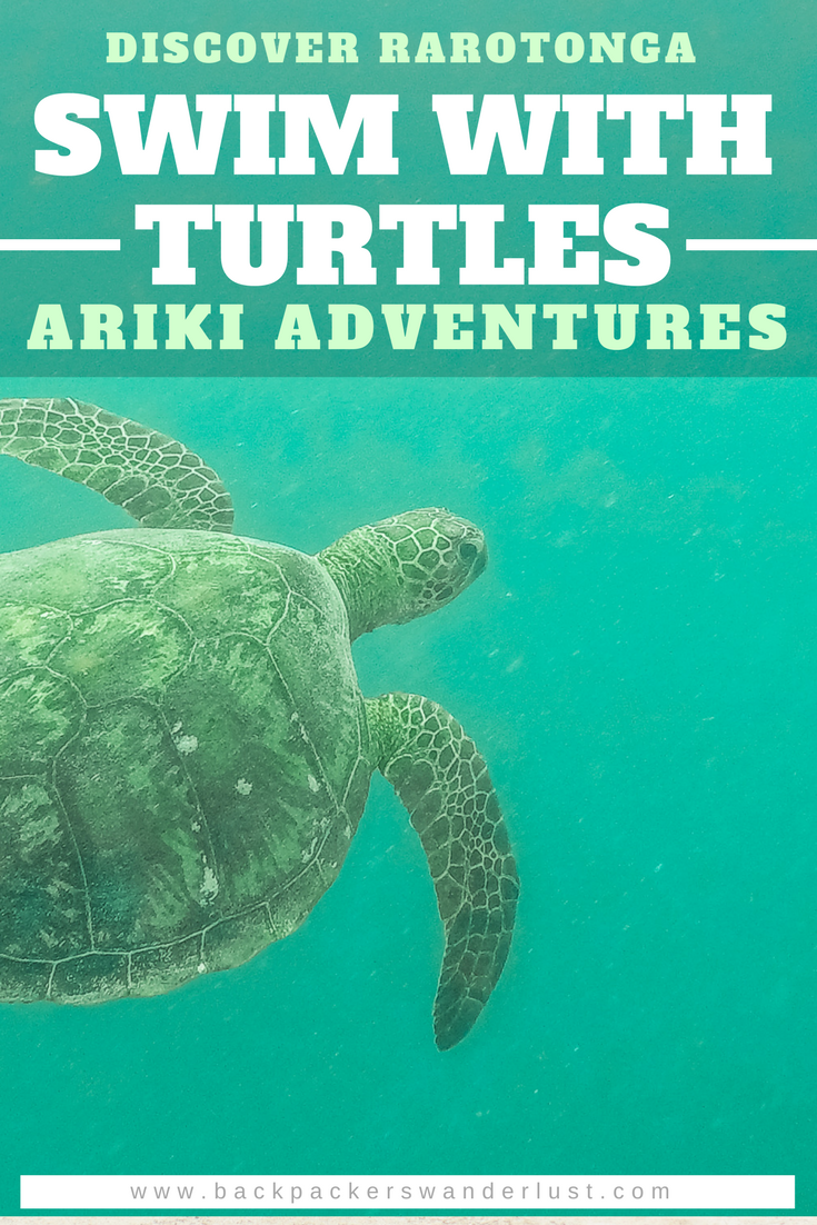 49c49100ac5e Achieve your bucket list dreams by swimming with turtles in Rarotonga.  Ariki Adventures experienced guides