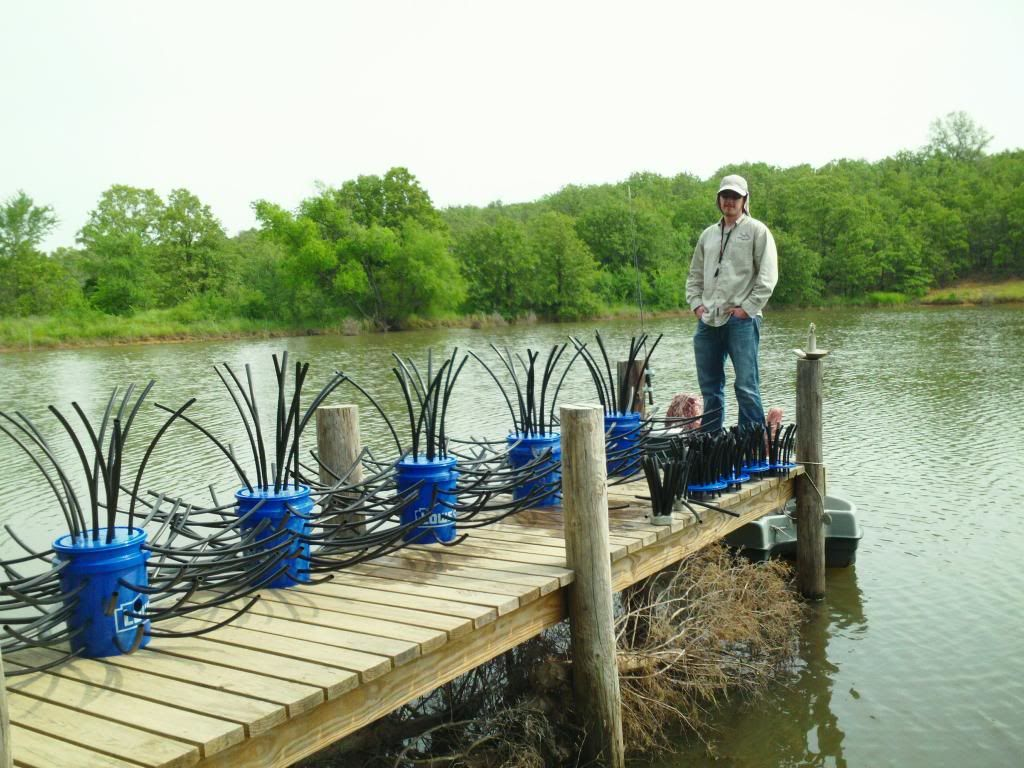 Pin by mgm on misc pinterest fish and bass fishing for Bass pond construction