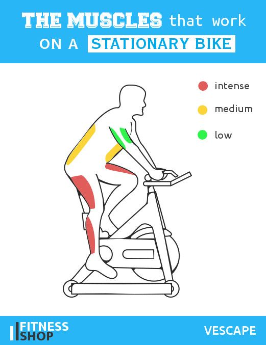Muscles Work On Stationary Bike Stationary Bike Workout Bicycle