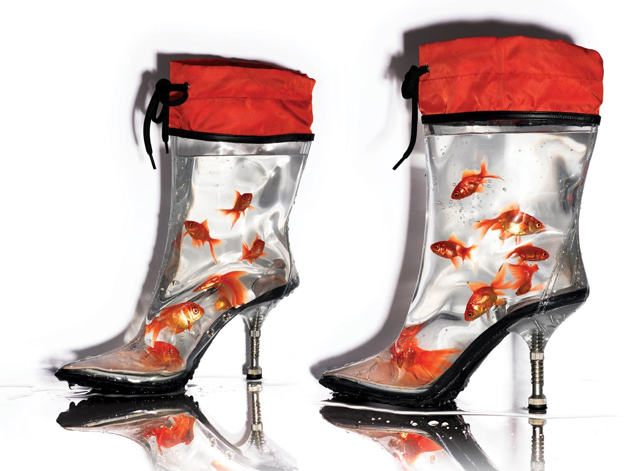 Shoes With Goldfish In Heel