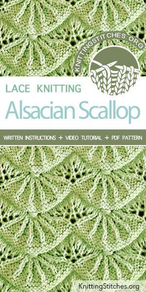 Alsacian Scallop