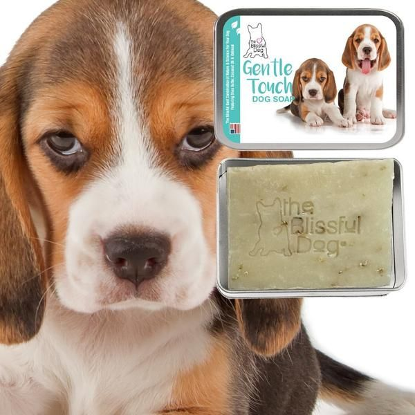 Beagle Gentle Touch Dog Soap Puppy Shampoo Dog Shampoo Dog Wash