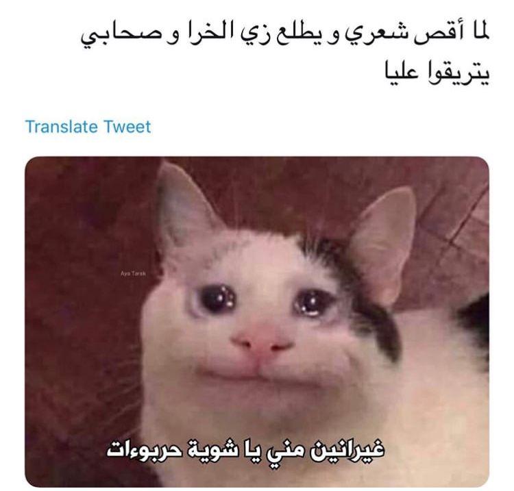 Pin By Simaa Ahmed On ضحك Funny Funny Science Jokes Funny School Memes Crazy Funny Memes