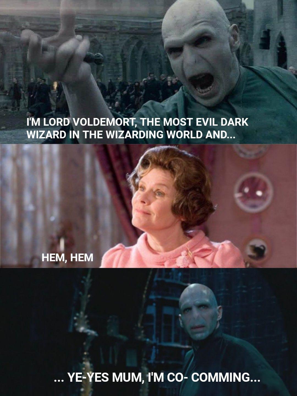Voldemort And Umbridge Harry Potter Jokes Voldemort Dark Wizard
