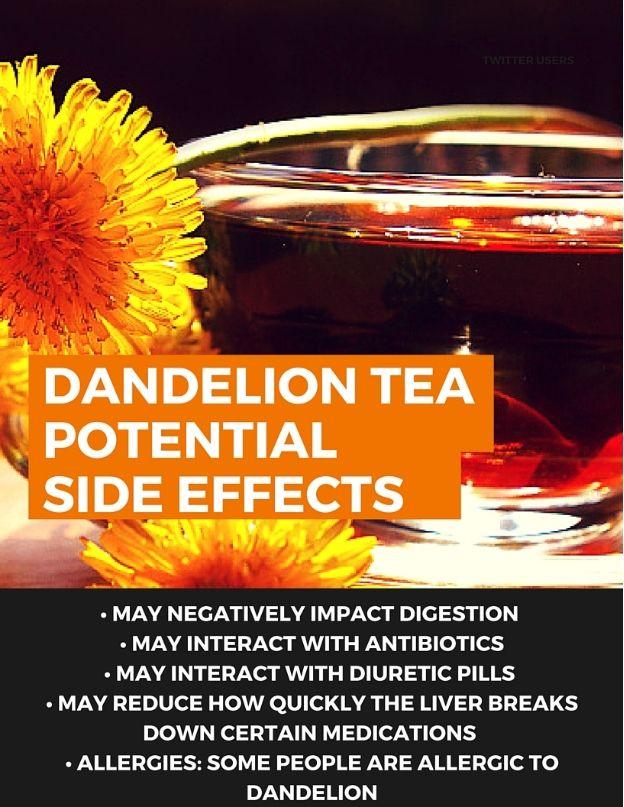 The Health Benefits Of Dandelion Tea Detox Dandelion Tea Dandelion Tea Detox Dandelion Tea Benefits