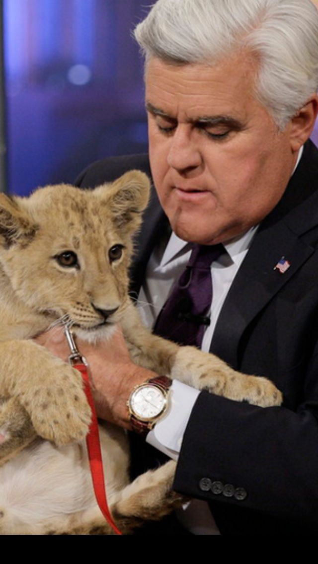 Jay Leno with a beautiful lion cub...