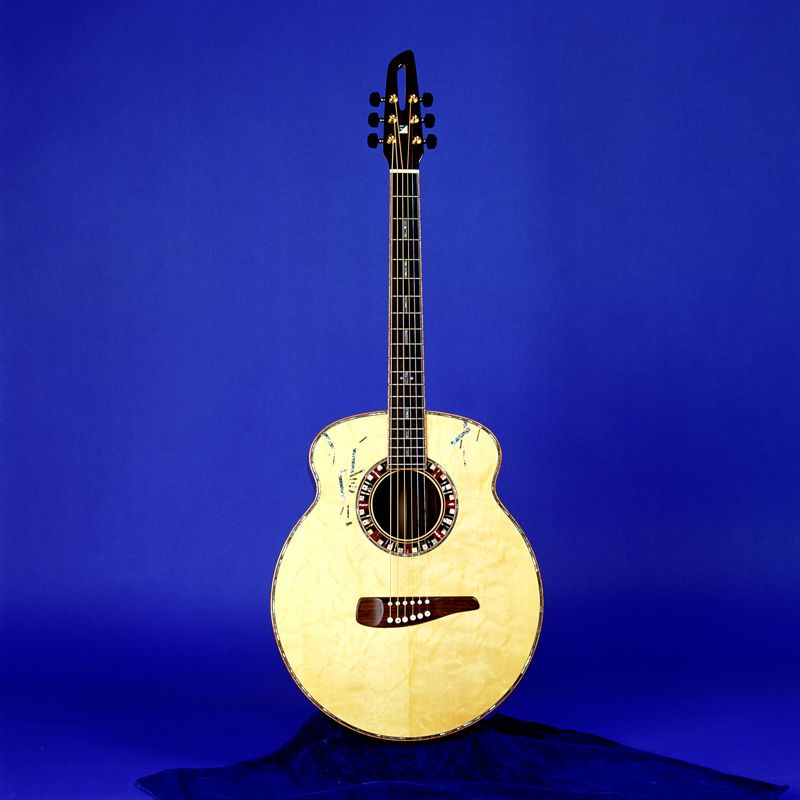 Melo Guitars AM1 Supreme Custom... like the individual saddles on the bridge