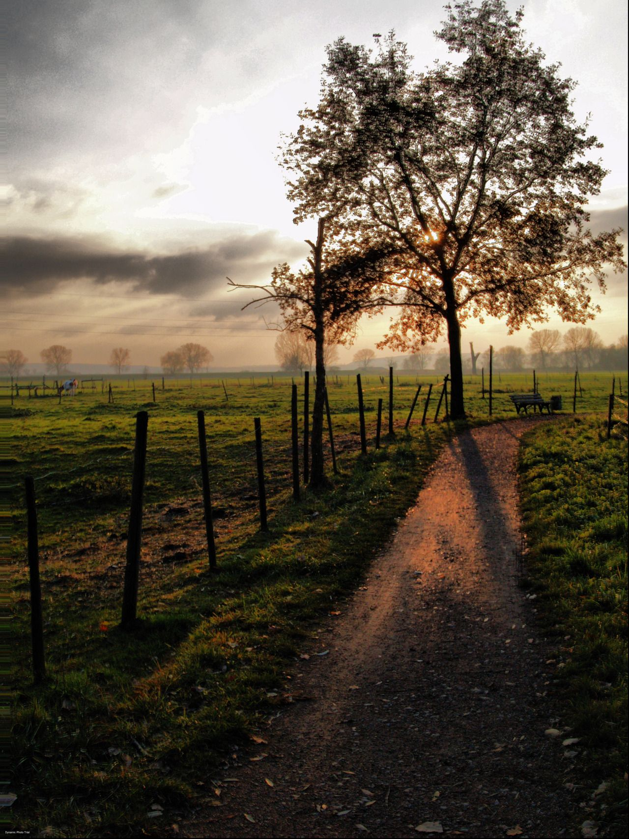 Trebur - Germany (by MIchael Gottwald)