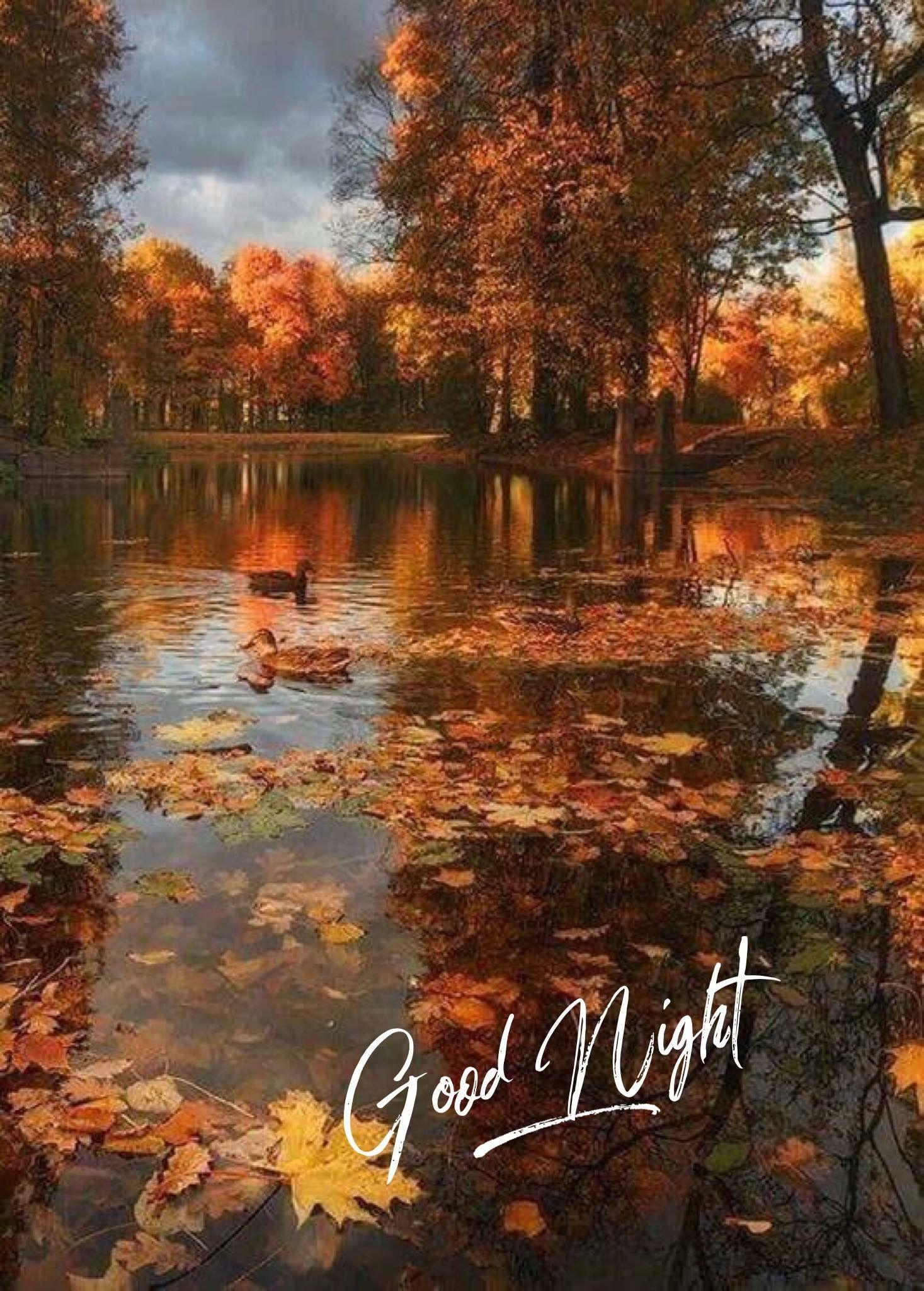 Good Night Autumn Scenery Scenery Nature Photography