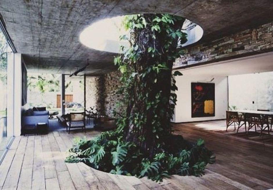 Amazing Artistic Tree Inside House Interior Design 15 Home