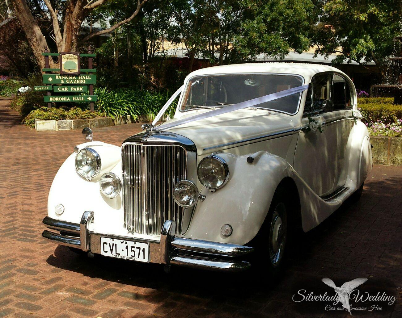 Jaguar Mkv Wedding Car Classic Cars Wedding Car Hire Wedding Car