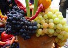 COOL COOL COOL: Есенни кюстендилски дарове