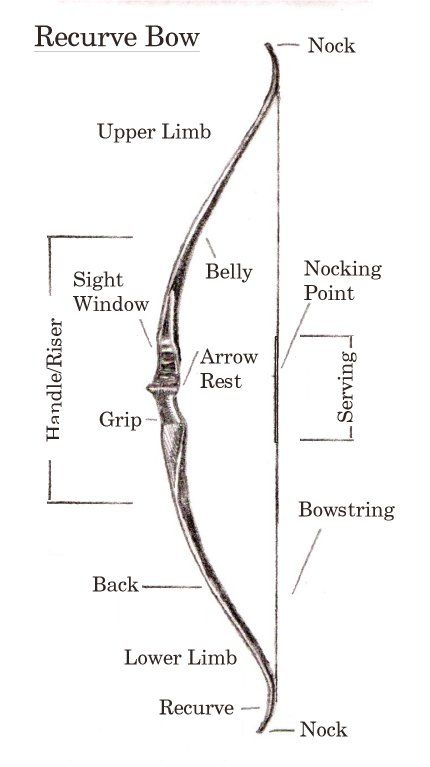 I should really be sleeping but I\'m too busy researching recurve ...