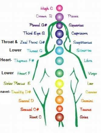 Chakra Chart As Michel Chapuis Plays It You Scroll Through The Notes They Are
