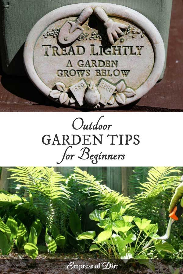 Top Gardening Tips for Happy Outdoor Plants - Empress of Dirt