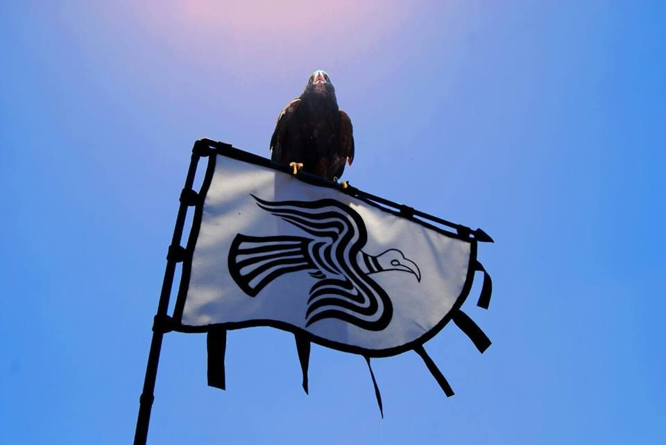 знамя викингов картинки машина пользуется