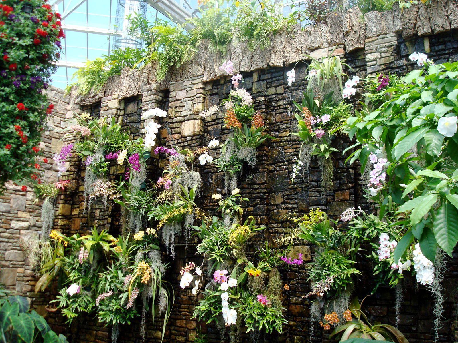 Merveilleux Orchid Conservatory At Daniel Stowe Botanical Garden, Charlotte, NC.