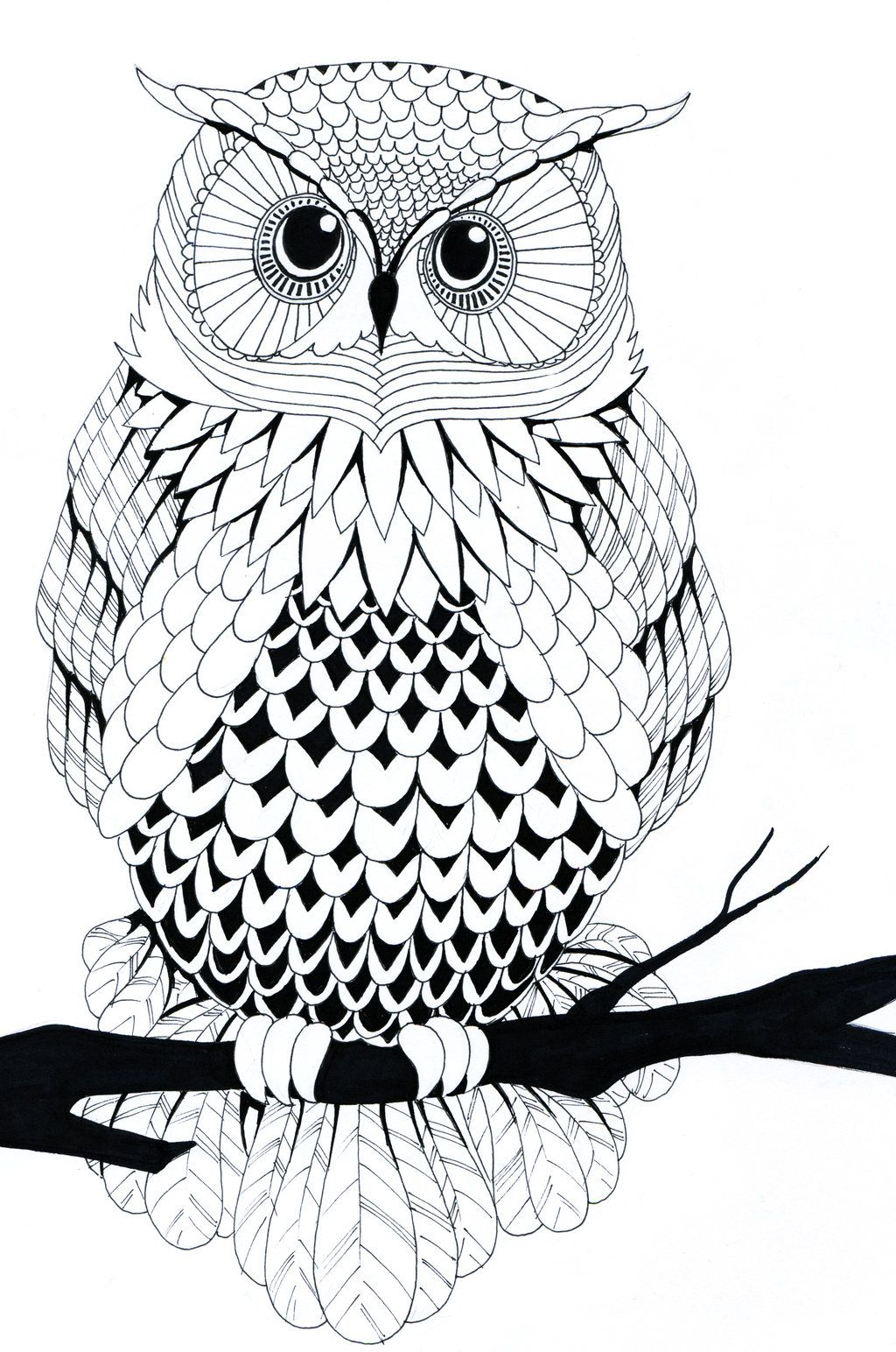 Black and white owl by on for Draw the owl