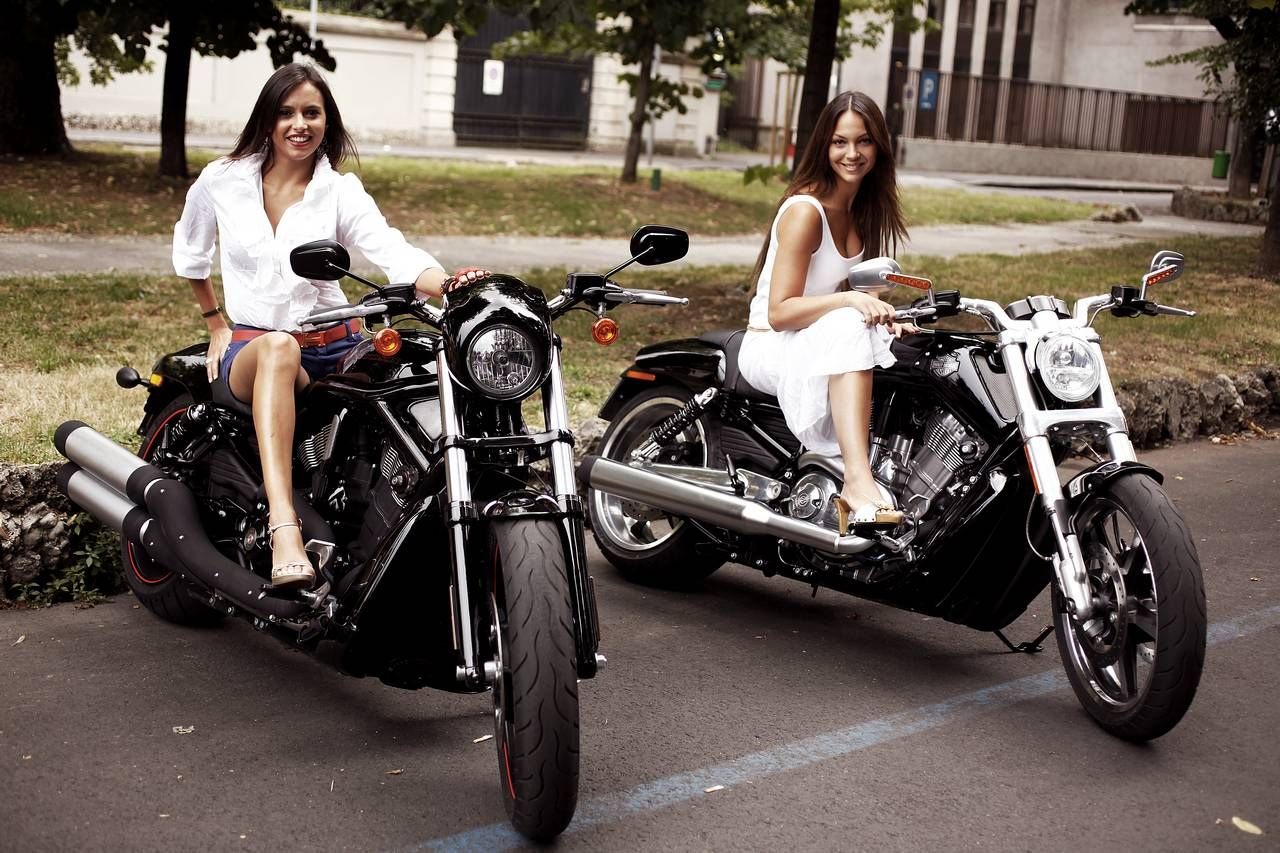 davidson single girls Harley davidson singles 17652 me gusta 328 personas están hablando de esto the largest dating site for single harley riders.