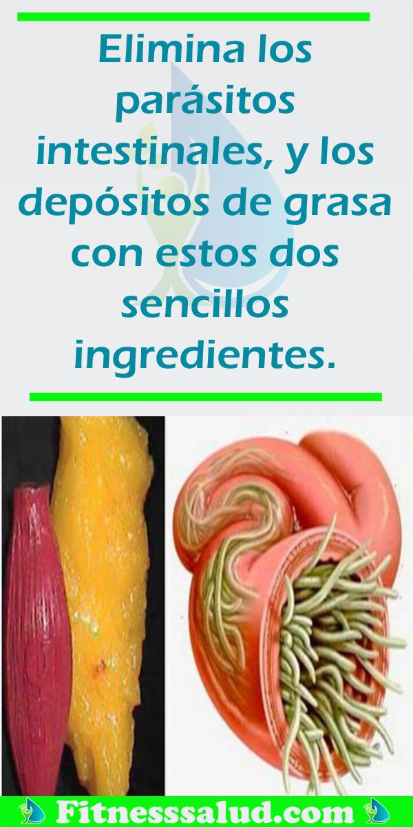 eliminar parasitos en el estomago