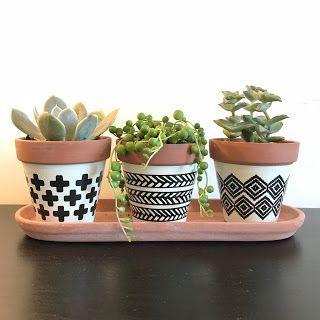 Small Pots For Succulents Terracotta Plants Succulents Black And White Pots Button Succulents Rod Wo En 2020 Macetas Decoradas Macetas Pintadas Plantas En Maceta