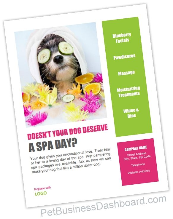 Grooming Spa Poster Flyer Template Pet Businesses Soggy Doggy Spa Flyer