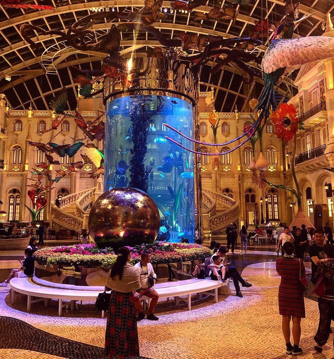 Mgm Hotel Lobby Aquarium Macau Hotel Lobby Amazing Fish Mgmgrand Casino City Mgm Hotel Lobby Aquarium Macau Hotel L Mgm Hotel Lobby Hotel