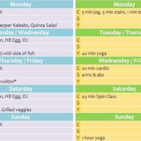 Week 15 Diet and FitnessPlan