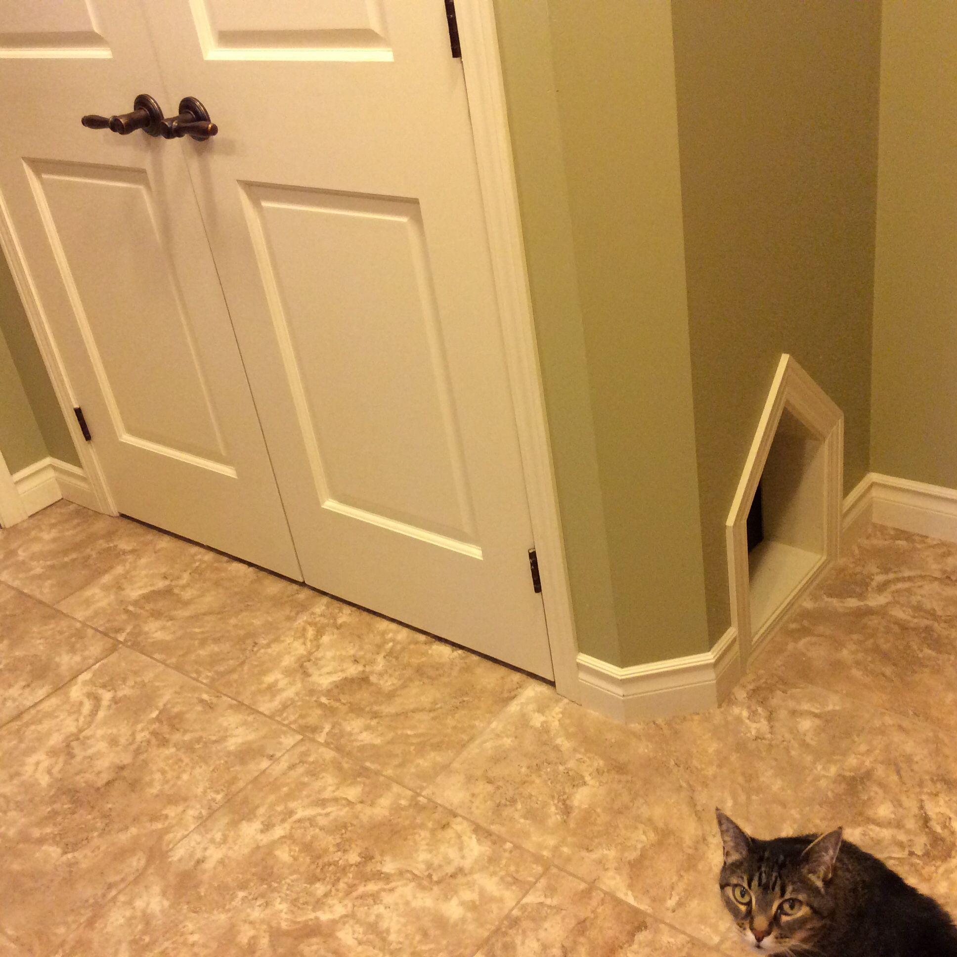Delicieux Cat Litter Box Closet