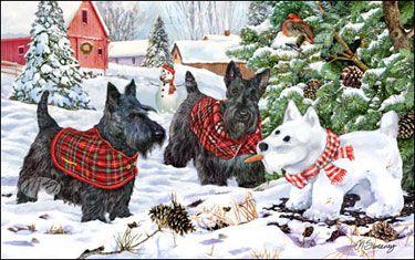 Margaret Sweeney's dog art