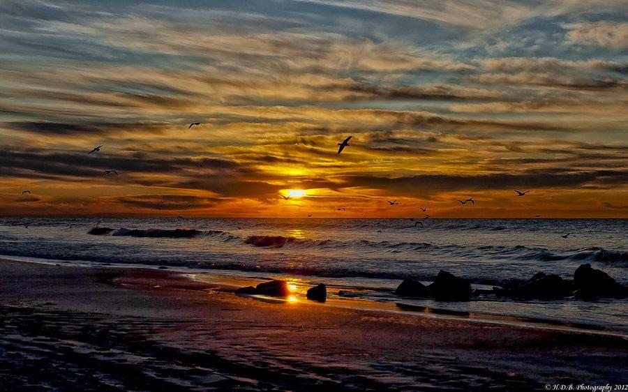 Beach Sunrise; Photo by: Harold Begun