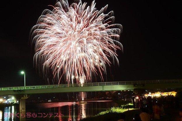 撮影者:ヨッシー甘木川花火大会の花火を撮影しました。花火と聞くと夏を連想いたします。