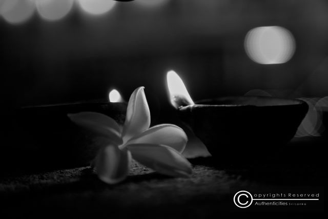 The Traditional Oil Lamps On The Backdrop Of A Frangipani Flower Lanterns Decor Oil Lamps Traditional