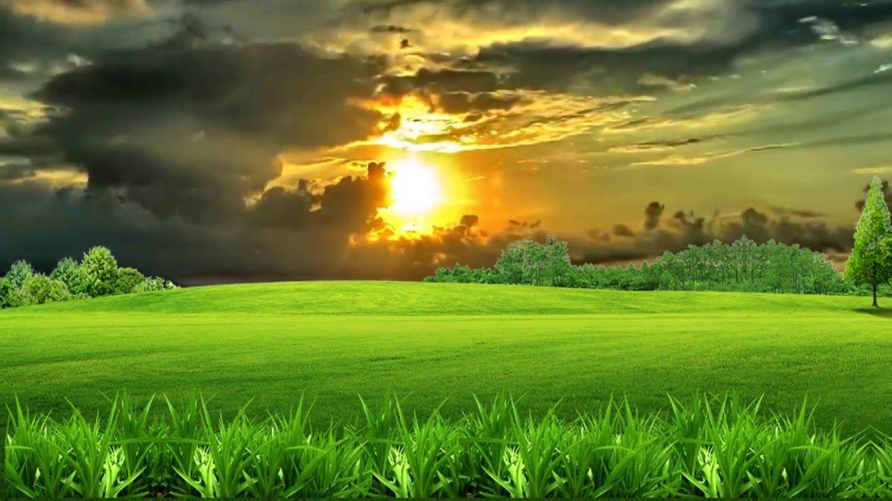 HD 1080p Beautiful Natural Scenery Video, Royalty free