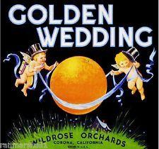 carter fruit co. Beach lake groveland original florida orange crate label