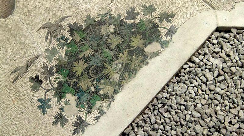 Mosaico pavimentale con cespuglio e uccelli in volo (VI sec.)- Museo dei Mosaici, Istambul