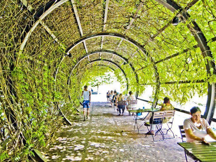 green tunnel #biocultivo #huertos #jardines | Paysage ...