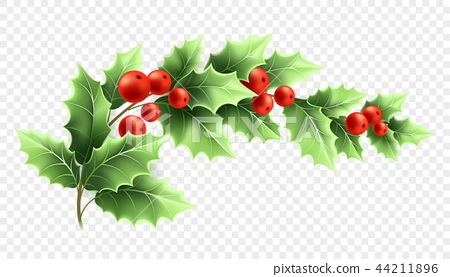 Christmas holly branch realistic illustration ในปี 2020